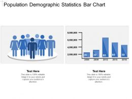 Population Demographic Statistics Bar Chart