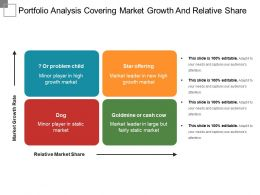 Portfolio Analysis Covering Market Growth And Relative Share