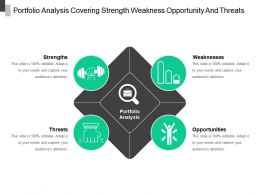 Portfolio Analysis Covering Strength Weakness Opportunity And Threats
