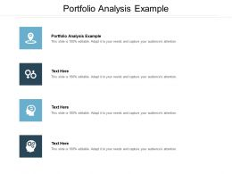 Portfolio Analysis Example Ppt Powerpoint Presentation Infographic Template Guidelines Cpb