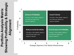 Portfolio Analysis Matrix Showing Profitability And Strategic Alignment
