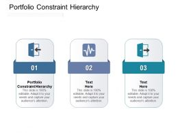 Portfolio Constraint Hierarchy Ppt Powerpoint Presentation Professional Smartart Cpb