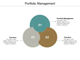 Portfolio Management Ppt Powerpoint Presentation Show Example Introduction Cpb