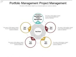 Portfolio Management Project Management Ppt Powerpoint Presentation Gallery Graphics Cpb