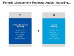 Portfolio Management Reporting Analyst Marketing Analyst Marketing Exit Strategy Cpb