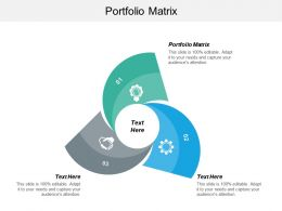 Portfolio Matrix Ppt Powerpoint Presentation Icon Slide Download Cpb