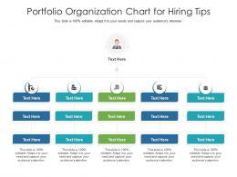 Portfolio Organization Chart For Hiring Tips Infographic Template