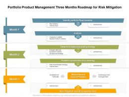 Portfolio Product Management Three Months Roadmap For Risk Mitigation