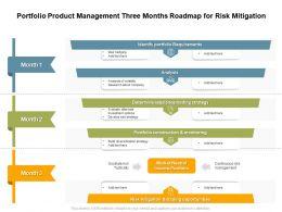 Portfolio Product Management Three Months Roadmap For Risk Mitigation