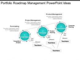 Portfolio Roadmap Management Powerpoint Ideas