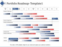 Portfolio Roadmap Process Ppt Summary Infographic Template