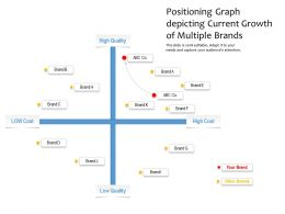Positioning Graph Depicting Current Growth Of Multiple Brands