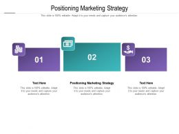 Positioning Marketing Strategy Ppt Powerpoint Presentation Icon Examples Cpb