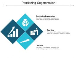 Positioning Segmentation Ppt Powerpoint Presentation Infographic Template Outfit Cpb