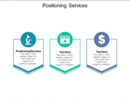 Positioning Services Ppt Powerpoint Presentation Outline Styles Cpb