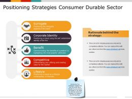 Positioning Strategies Consumer Durable Sector Powerpoint Guide