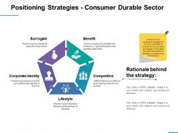 Positioning Strategies Consumer Durable Sector Ppt Professional Elements