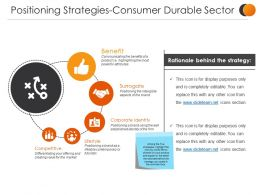 Positioning Strategies Consumer Durable Sector Presentation Outline