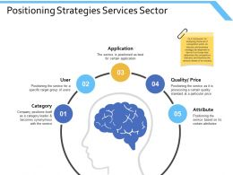 Positioning Strategies Services Sector Application Ppt Powerpoint Presentation Ideas