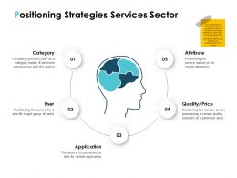 Positioning Strategies Services Sector Ppt Powerpoint Presentation Portfolio