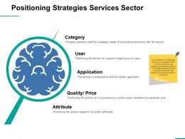 Positioning Strategies Services Sector Ppt Professional Display