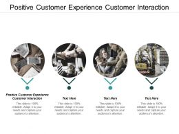 Positive Customer Experience Customer Interaction Ppt Powerpoint Presentation Inspiration Styles Cpb