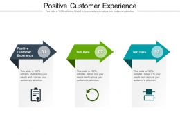 Positive Customer Experience Ppt Powerpoint Presentation Styles Good Cpb