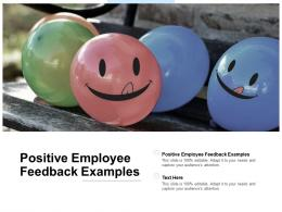 Positive Employee Feedback Examples Ppt Powerpoint Presentation Model Format Cpb