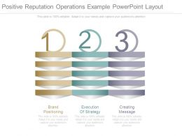 Positive Reputation Operations Example Powerpoint Layout