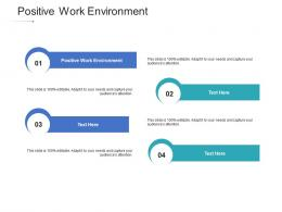 Positive Work Environment Ppt Powerpoint Presentation Layouts Files Cpb