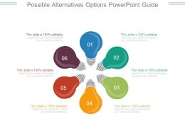 Possible Alternatives Options Powerpoint Guide