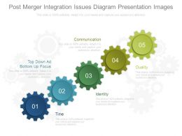 Post Merger Integration Issues Diagram Presentation Images