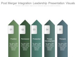 Post Merger Integration Leadership Presentation Visuals