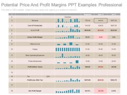 Potential Price And Profit Margins Ppt Examples Professional