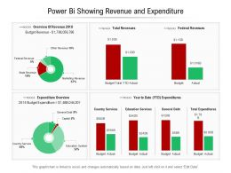 Power Bi Showing Revenue And Expenditure