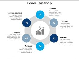 Power Leadership Ppt Powerpoint Presentation Model Professional Cpb