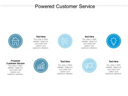 Powered Customer Service Ppt Powerpoint Presentation Infographics Example Cpb