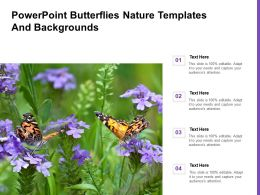 Powerpoint Butterflies Nature Templates And Backgrounds