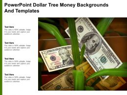 Powerpoint Dollar Tree Money Backgrounds And Templates