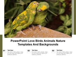 Powerpoint Love Birds Animals Nature Templates And Backgrounds