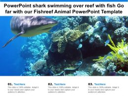 Powerpoint Shark Swimming Over Reef With Fish Go Far With Our Fishreef Animal Template