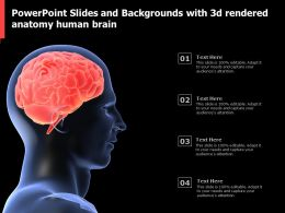 Powerpoint Slides And Backgrounds With 3d Rendered Anatomy Human Brain