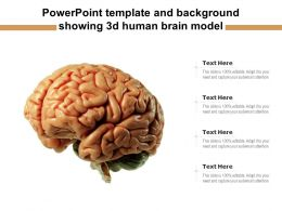 Powerpoint Template And Background Showing 3d Human Brain Model