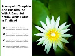 Powerpoint Template And Background With A Beautiful Nature White Lotus In Thailand