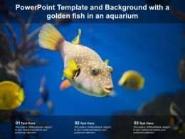 Powerpoint Template And Background With A Golden Fish In An Aquarium