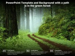 Powerpoint Template And Background With A Path Is In The Green Forest