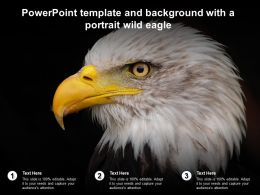Powerpoint Template And Background With A Portrait Wild Eagle