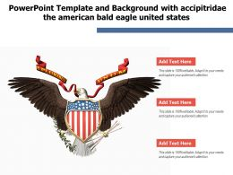 Powerpoint Template And Background With Accipitridae The American Bald Eagle United States