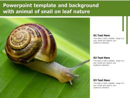 Powerpoint Template And Background With Animal Of Snail On Leaf Nature