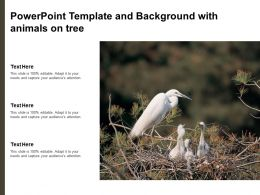 Powerpoint Template And Background With Animals On Tree